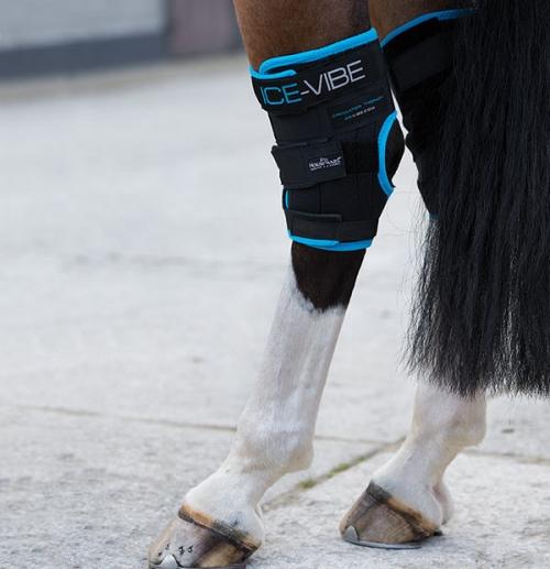 Horseware Ice Vibes Hock Wrap
