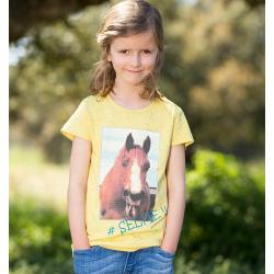 Horseware Shirt Acaia